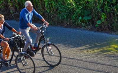 Riding reverses dementia decline, says WHO