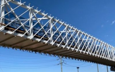New bridge begins to soar
